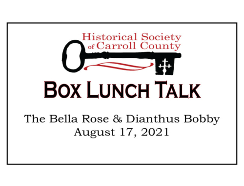 Box Lunch Talk:  The Bella Rose & Dianthus Bobby